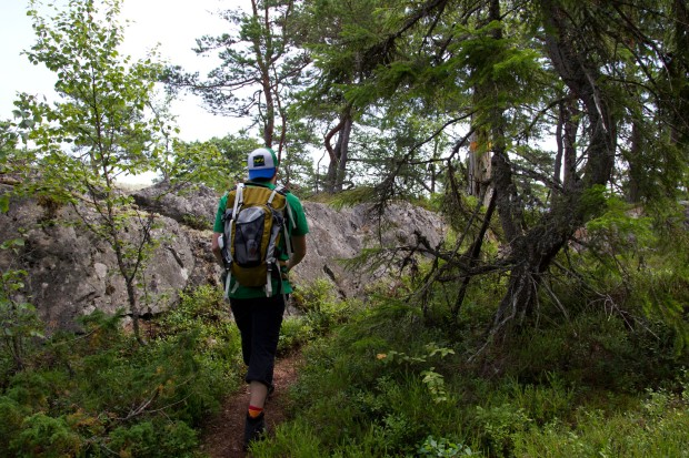 11 Vandrare Tullviksbäckens naturreservat 4230